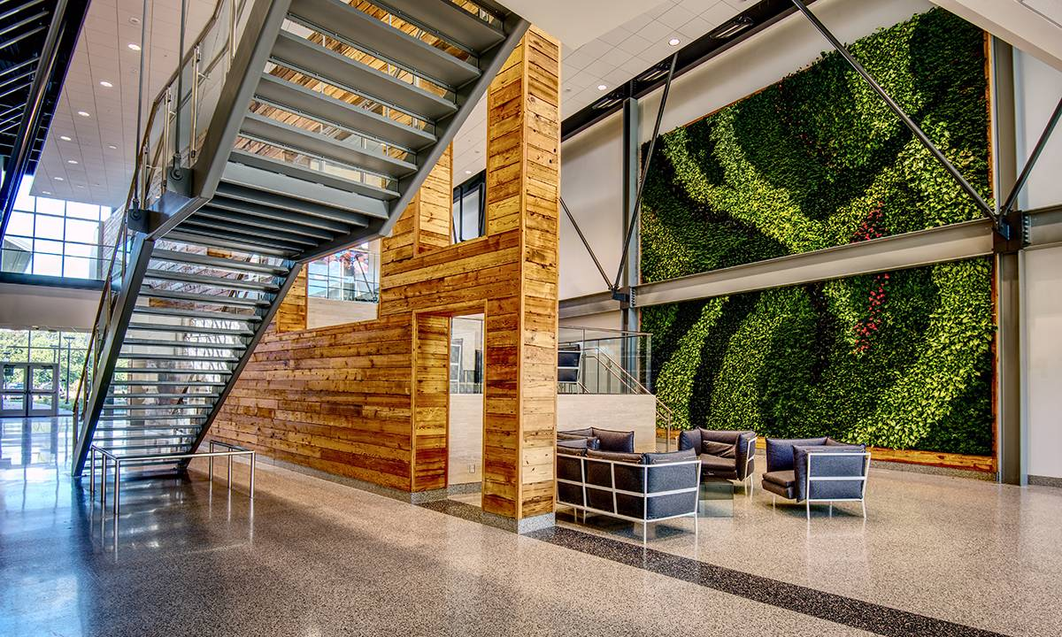 The future of the living green wall